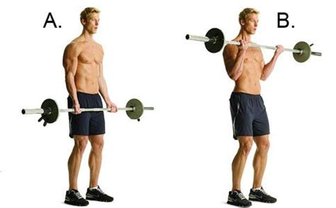 the 30 most powerful arm 46 best images about fitness workout on pinterest cable