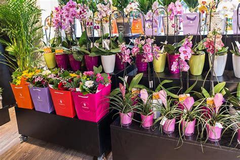 franchising fiori franchising italiano di negozi di fiori fiorito