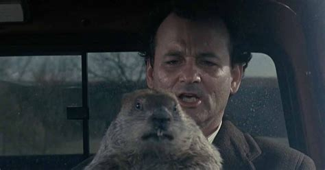 groundhog day used to something bill murray s acted alongside him in