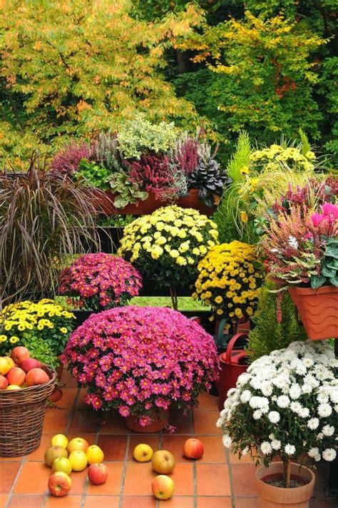 Fall Flower Garden Ideas 17 Best Ideas About Autumn Garden On Summer Plants Moon Plant And Moon Flower Plant
