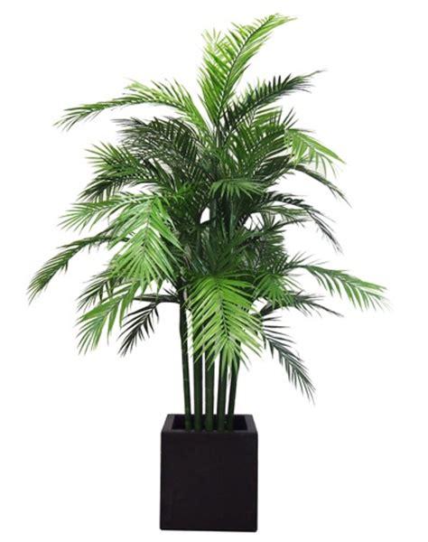 kunstpflanzen uv kuv21 - Kunstpalme Aussenbereich