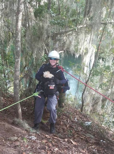 yorkie poo rescue florida yorkie poo retrieved from rock quarry by marion county rescue villages news