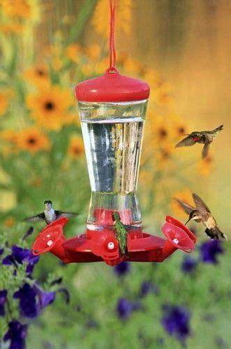 25 best ideas about humming bird feeders on pinterest
