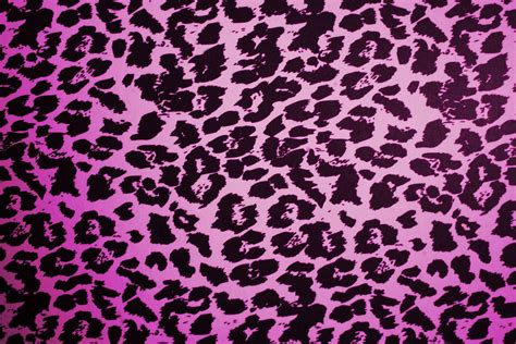 colorful leopard wallpaper animal print desktop backgrounds wallpaper cave