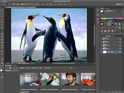 download photoshop cs6 full version remo xp download adobe photoshop cc 2018 19 1 2 freewareupdate com