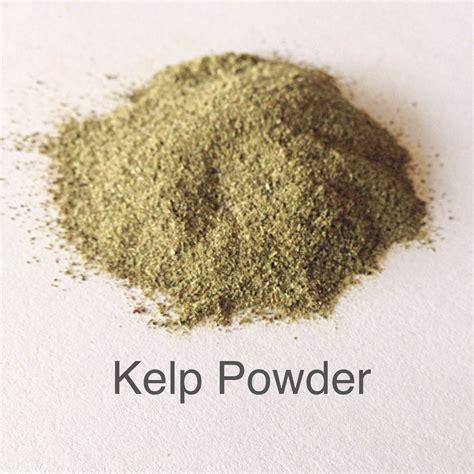 Seaweed Powder kelp powder micas and more