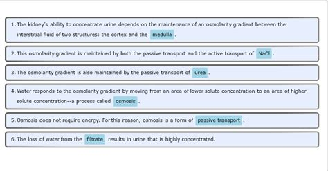 protein used in a sentence active transport biology dictionary autos post