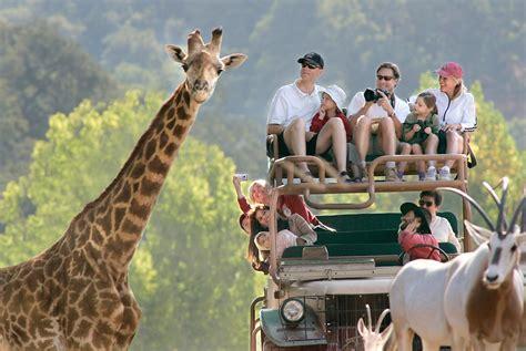 Safitri Syari 7 us safaris you can t afford to miss flyopedia