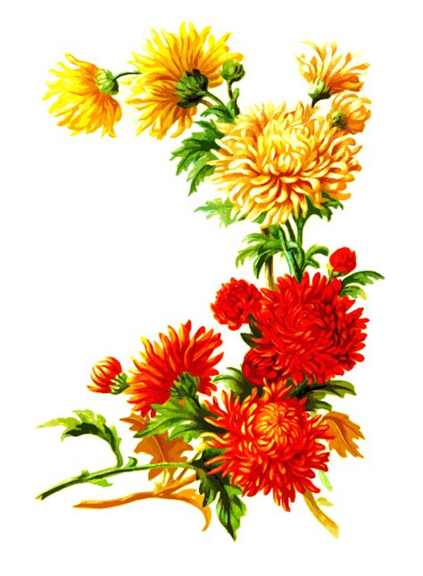 image for flowers clipart flowers 3
