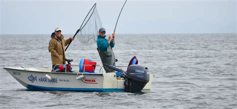 are trophy boats unsinkable salmon fishing in our boston whalers hakai lodge bc canada