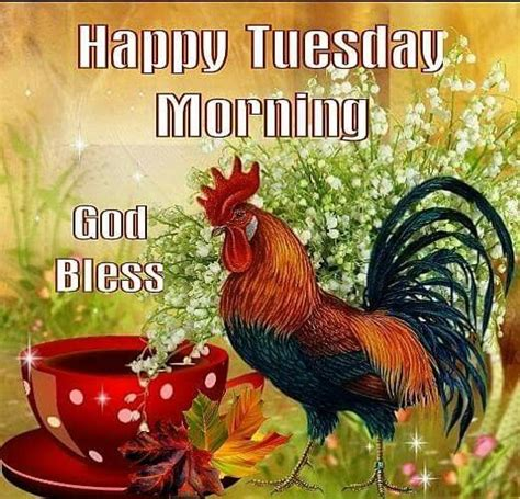 rooster happy tuesday morinng pictures   images  facebook tumblr pinterest
