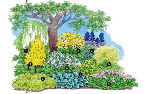 pflanzen nordseite pflanzplan vorgarten spinjo info