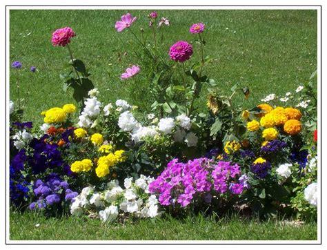 imagenes flores de jardin fotos de jardines con flores imagui
