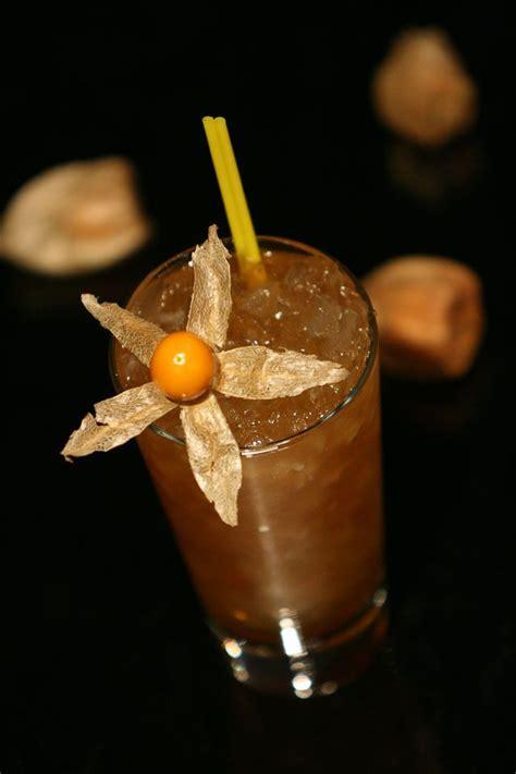 drink garnish 84 best images about cocktail garnishes on pinterest dr