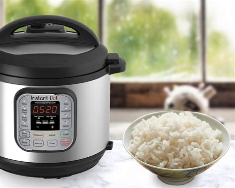 Rice Cooker Food Grade how to cook rice in an electric pressure cooker