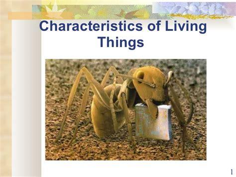 characteristics of biography ppt presentation characteristics of life