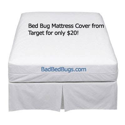 mattress cover  bed bugs cheap bedbug protector