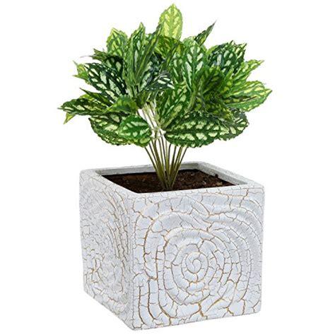 White Plant Containers 6 Inch Decorative Spiral Design Square White Ceramic Plant