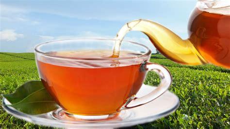 Teh Herbal Tr Baik Untuk Kesehatan Dari Budaya Cina Kuno khasiat teh basi untuk rambut fenomagz