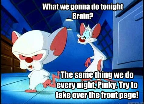 Pinky And The Brain Meme - pinky and the brain memes quickmeme