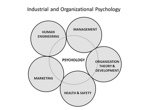 Io Psychology Mba Dual Degree by What Is I O Psychology Psychology Is The Science Of Human