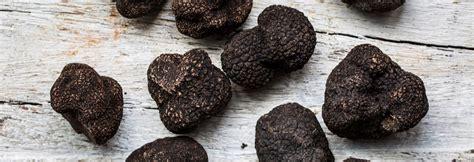 how to your to hunt truffles chefs recipe truffle arancini by gordon ramsay restaurants the 183 lrg 183