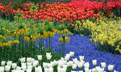 imagenes jardines mas hermosos mundo jardines m 225 s bellos del mundo i el viajero feliz