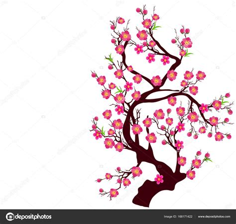 new year cherry blossom vector vector cherry blossom for new year and lunar new