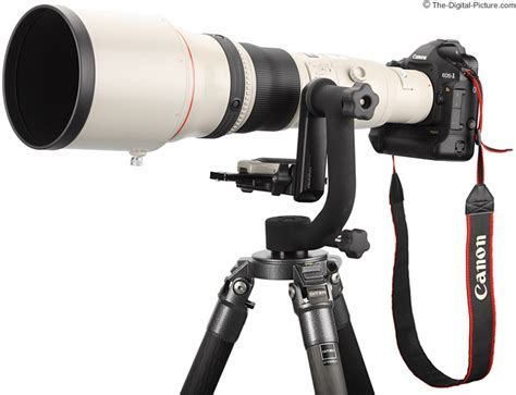Canon Lens Ef 800mm F5 6 L Usm canon ef 800mm f 5 6l is usm lens review