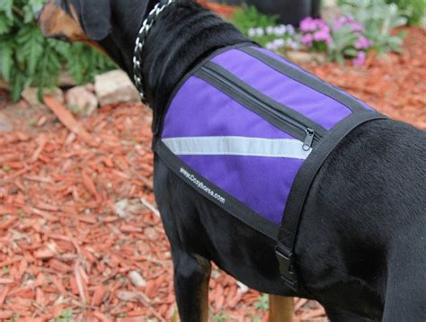 Pet Vest To Save Your Poochs Day by How To Put Weight On A Benefit From A Weight Vest