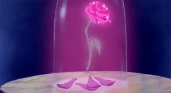 enchanted roses beauty and the beast real enchanted rose created by my