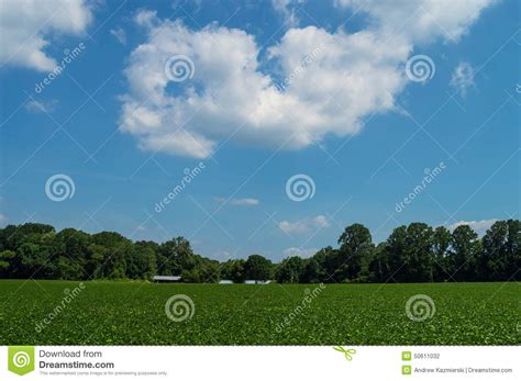blue sky landscape stock photo image 50611032