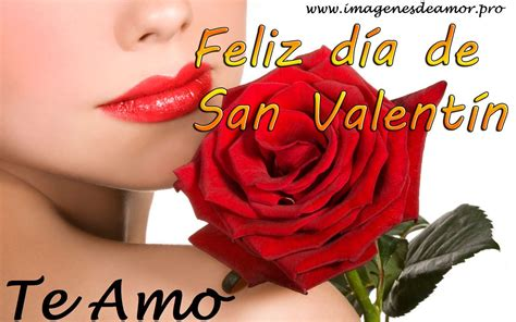 imagenes rosas san valentin tarjetas de rosas para san valent 237 n 14 de febrero