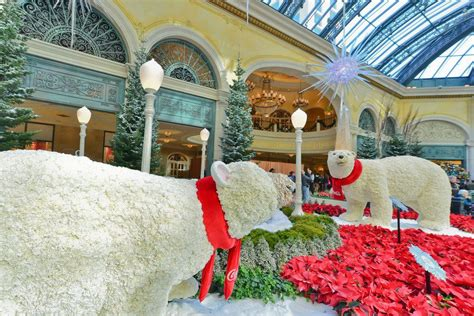 vegas attractions over christmas bellagio conservatory botanical gardens las vegas attractions review 10best experts and