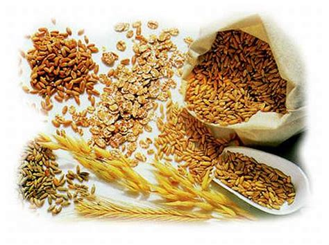 whole grains blood pressure the whole carb diet eat whole feel whole