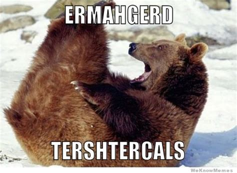 Ermahgerd Animal Memes - 12 funniest ermahgerd animals weknowmemes