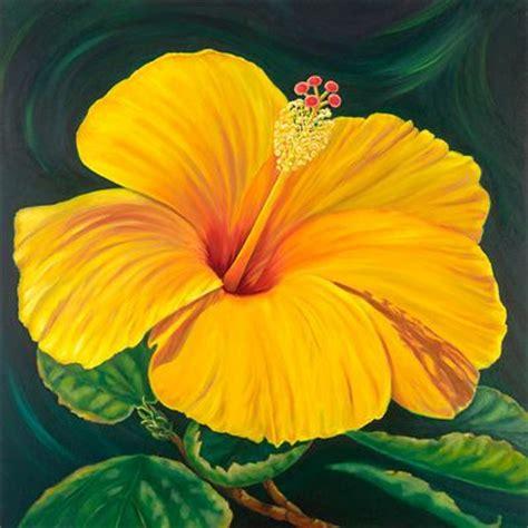 hawaiian yellow hibiscus orange yellow hibiscus hawaiian hibiscus flowers some yellow hibiscus hawaii