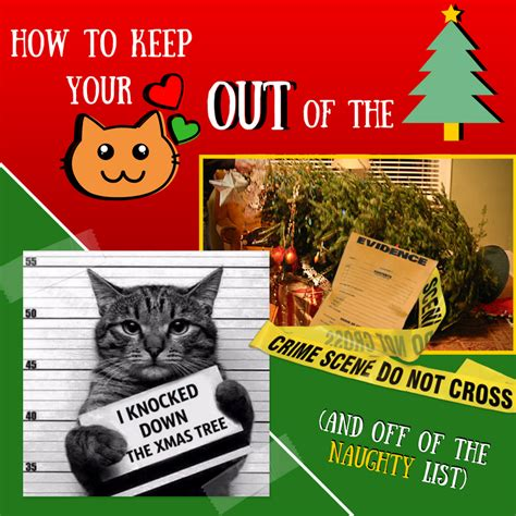 how to keep cats out of the christmas tree pet health allegheny veterinary hospital