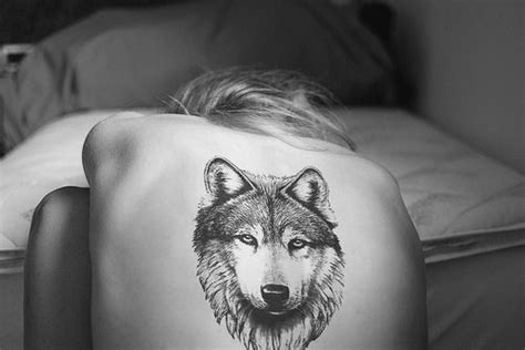 white wolf tattoo black and white photo wolf image 45272