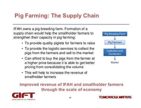sle business plan on pig farming pig farming business plan free download mind power videos