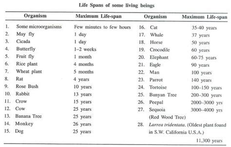 what has the lifespan reproduction in organism definition span features and types