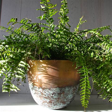 Copper Planters by Copper Or Brass Verdigris Planter By Garden Trading