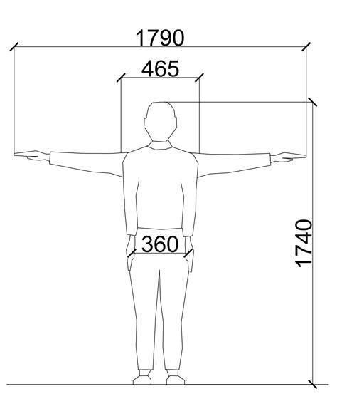 average male  female dimensions