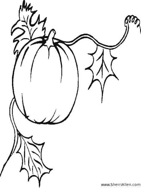 pumpkin harvest coloring page free seasonal coloring pages from sherriallen com