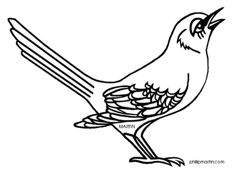 mockingbird coloring pages mockingbird clipart clipart suggest