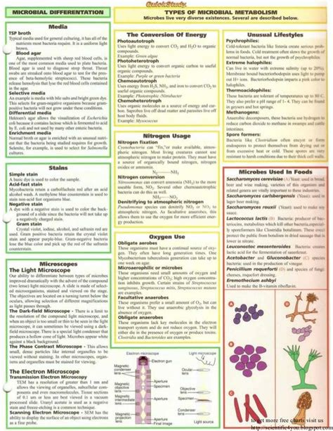 Microbiology Research Proposal Ideas