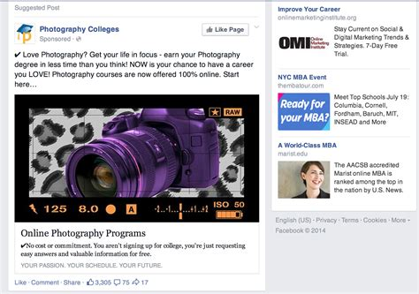 fb ads the beginner s guide to facebook ads for small businesses
