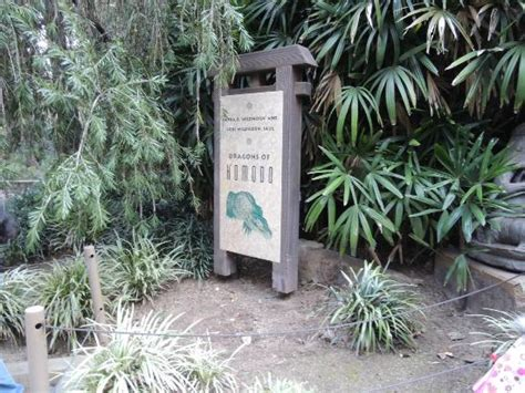 Los Angeles Zoo Botanical Gardens Komodo Picture Of Los Angeles Zoo Botanical Gardens Los Angeles Tripadvisor