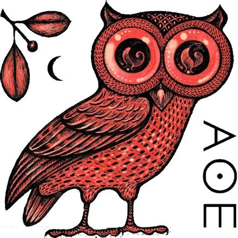 tattoo athena owl athena s owl beautiful tattoos tattoo ideas pinterest