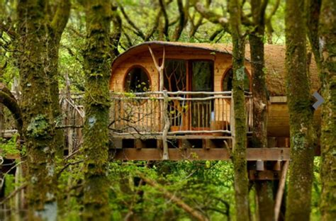 tree house buy tree houses to buy 28 images tree houses to buy design of your house its idea for